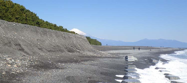 養浜のサイクル