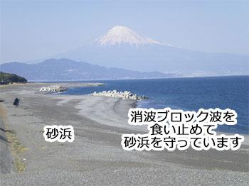 波消ブロック波を食い止めて砂浜を守っています